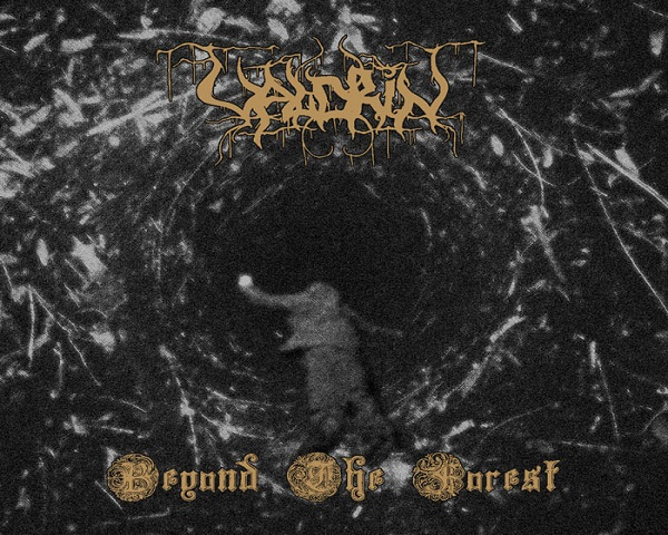Valdrin: Beyond the Forest